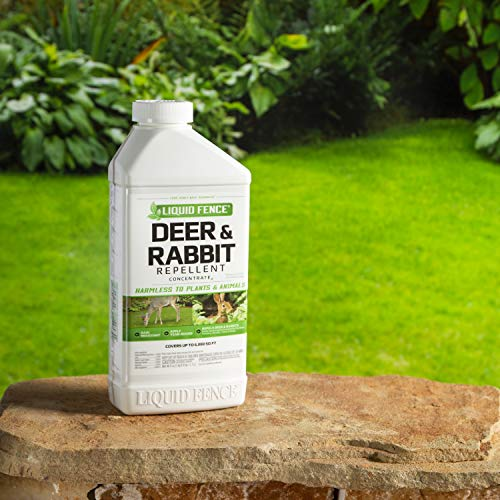 Liquid Fence Deer & Rabbit Repellent Concentrate, 40-Ounce