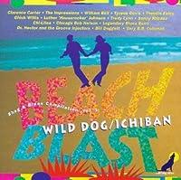 Ichiban Beach Blast 1