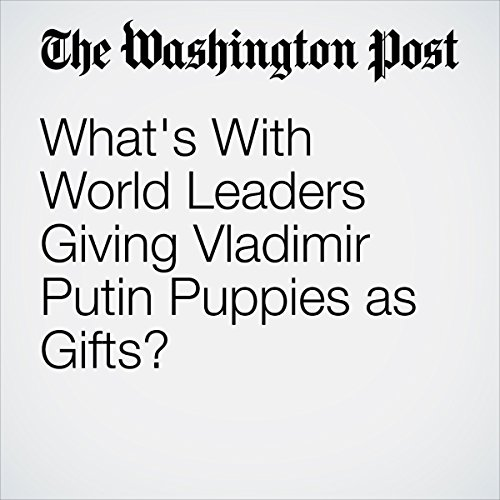 What's With World Leaders Giving Vladimir Putin Puppies as Gifts? | Kyle Swenson