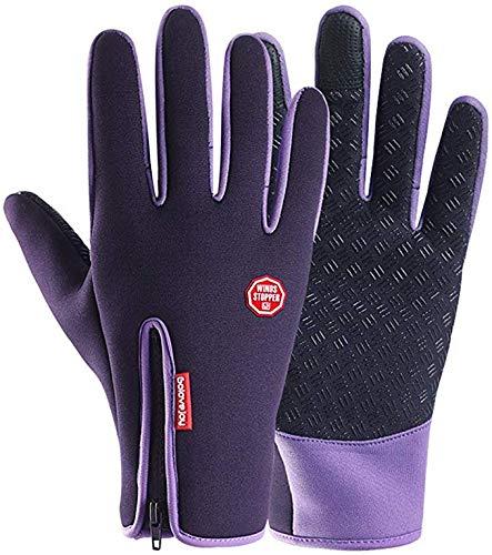 LLDKA motorhandschoenen volledige vinger-touch-screen handschoen met fleece voering waterdichte handschoenen herfst winter voorruit