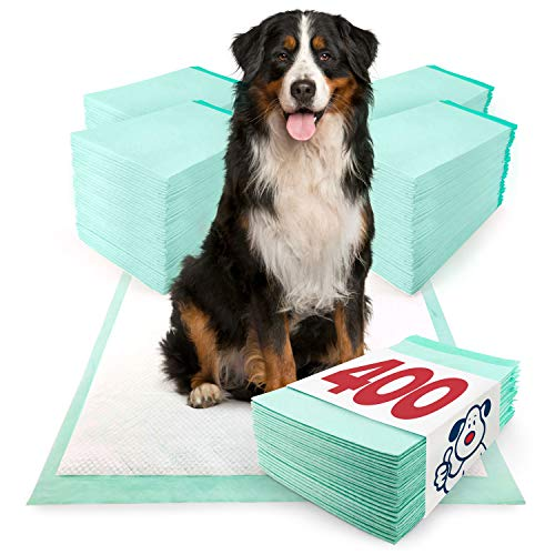 ValuePad Plus Puppy Pads, Extra Large 28x36 Inch, 400 Count - Premium Pee Pads for Dogs, Tear Resistant, Super Absorbent Polymer Gel Core, 5-Layer Design