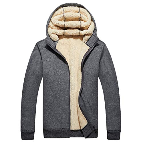 Dasongff heren winter sweatjas met capuchon winterjas mannen rits fleece jack hoodie mode verdikte capuchon vrije tijd jas maat mantel warm windbreaker streetwear capuchon pullover XXXXXL grijs