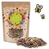 500g Semi di prato fiorito per un pascolo colorato delle api - miscela di semi di fiori selvatici ricchi di nettare per api e farfalle (incl. eBook GRATUITO)