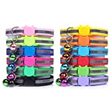 DNA My Dog Cat Collars, Harnesses & Leashes
