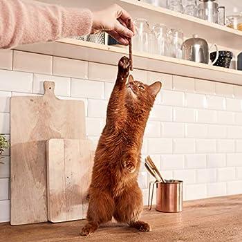 GimCat Sticks - Snack moelleux pour chats avec un pourcentage élevé de viande - Avec vitamines et taurine - Saumon & truite - 24paquets (24 x 4bâtonnets)