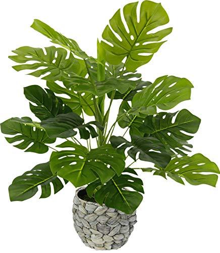 Flair Flower Topf Zimmerpflanze Splitphilopflanze im Übertopf aus Wasserhyazinthe Monstera Kunst Seidenblumen Real Touch grün Kunstpflanzen Splitphilo Pflanzen künstlich Dekopflanze groß, 46x35x35 cm