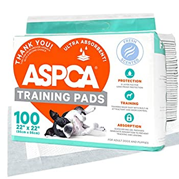 ASPCA AS62930 Dog Training Pads Pack of 100 Gray 22  x 22  - Pack of 100