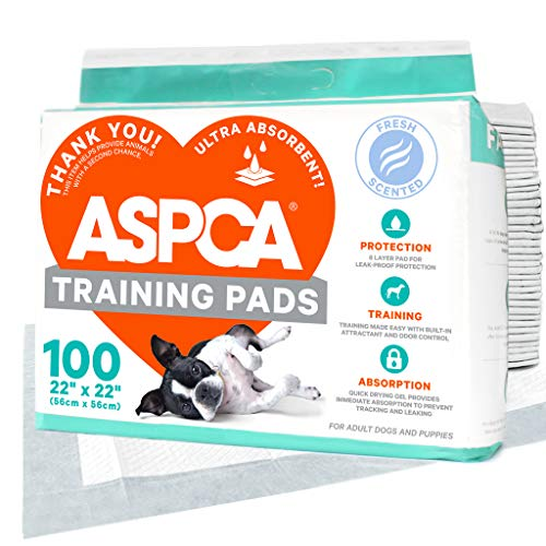 ASPCA AS62930 Dog Training Pads, Pack of 100, Gray, 22