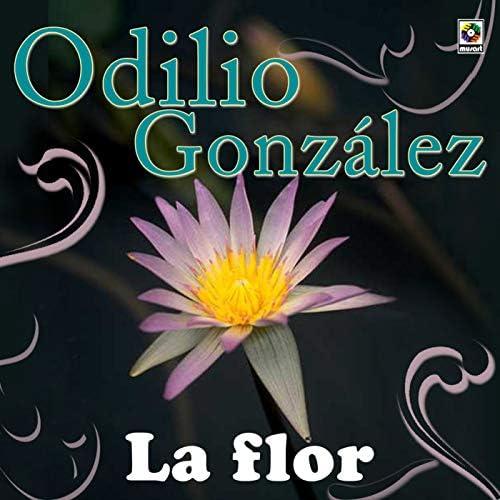 Odilio Gonzalez