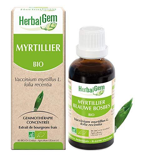 HerbalGem - Myrtillier Bio - Macérats-Mères de Gemmothérapie Concentrée - 30 ml