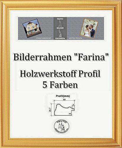 Farina Barock Bilderrahmen 90 x 170 cm Farbe und Verglasung wählbar 170 x 90 cm Hier: Gold schlicht mit Acrylglas Antireflex 2 mm