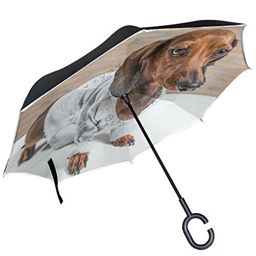 ALAZA rojo de perro salchicha perro camisa gris paraguas invertido doble capa resistente al viento Reverse paraguas