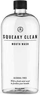 Fresh Breath Oral Mouth Rinse - Dentist Recommended, Cool Minty Flavor - Treats Bad Breath - Squeaky Clean 16oz