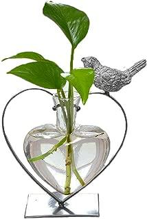 Best modern vase shapes Reviews