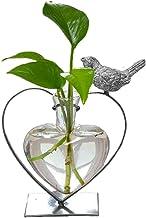 Marbrasse Desktop Glass Planter Hydroponics Vase,Planter Glass Vase with Holder for Home Decoration,Modern Creative Heart Shape Bird Plant Terrarium Stand, Scindapsus Container