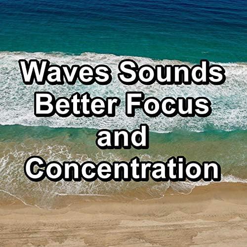 Sleep Waves, Waves of the Sea & Alpha Brain Waves