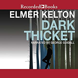Dark Thicket audiobook cover art