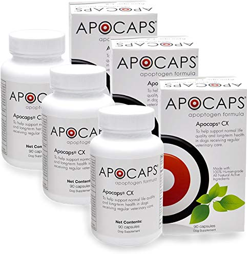 Apocaps CX Apoptogen Formula for Dogs (270 Capsules) - Supports Normal Levels of Apoptosis + Human Grade Ingredients Including Citrus Bioflavonoids, Silymarin, Curcumin and Turmeric + Biovadex