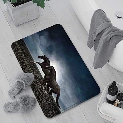 Alfombra de baño, Alfombra Absorbente Antideslizante,Caballos, pareja de caballos corriendo en el cam,Suave y acogedora, Agua súper Absorbente, Antideslizante, Gruesa para Dormitorio de baño 60x100 cm