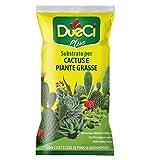 DueCi Substrato Cactus e Piante Grasse