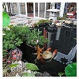 XJJUN Teichfolie, HDPE-Membran, Reißfestigkeit, UV-Beständigkeit, Anpassbar, Für Gartenteiche, Wasserfälle, Bäche, Brunnen (Color : 0.3mm, Size : 2x10m)