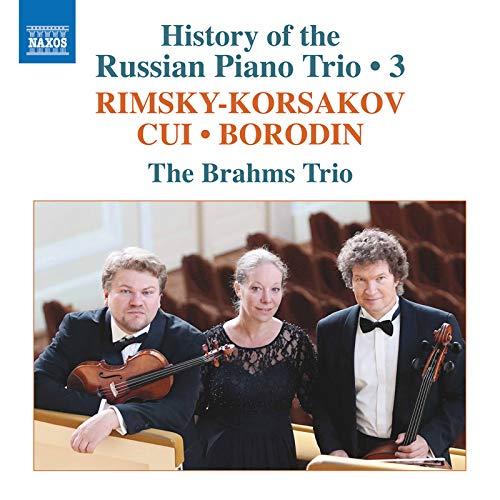 Piano Trio in C Minor (Completed M. Steinberg): II. Allegro
