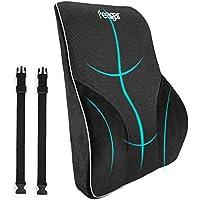 Feagar Memory Foam Orthopedic Lumbar Support Pillow (Black)