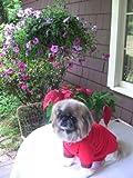 Joybies Nachthemd für Hund Klein Rot