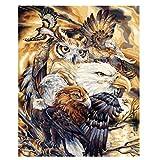 Dibujo por número, Materiales ecológicos, Principiantes, Regalos para Amigos, decoración del hogar-Águila