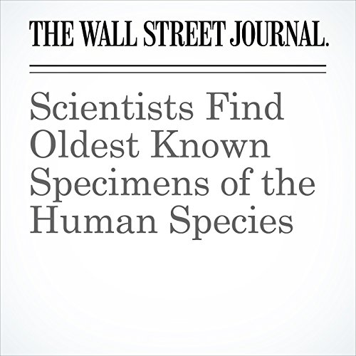 Scientists Find Oldest Known Specimens of the Human Species copertina