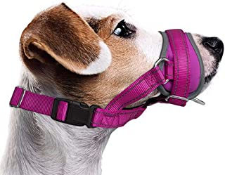 AUTOWT Dog Muzzle, Update Nylon Dog Mouth Cover Prevent from Biting Barking Chewing Behavior Training More Comfortable Adj...