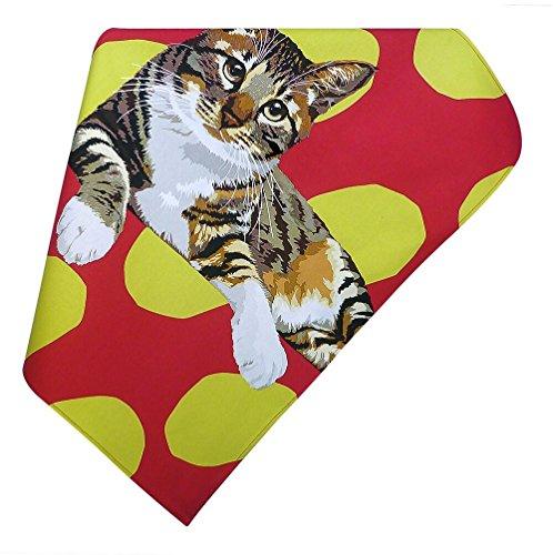 Chat tigré Torchon par Leslie Gerry