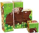 Goula - 9 cubos de diseño animales del bosque (Diset 53419) , color/modelo surtido