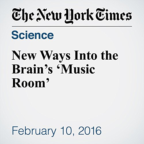 New Ways Into the Brain's 'Music Room' audiobook cover art