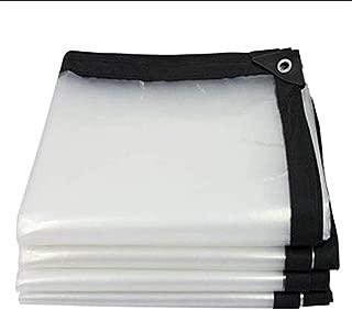 BAIYING Toldo Lona Impermeable Patio Transparente Tela Impermeable Cubierta Engrosamiento Coche Hebilla De Aluminio Polietileno 20 Tallas Personalizable (Color : Clear, Size : 2x3m)