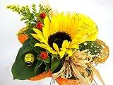 VERSANDKOSTENFREI Blumenstrauß'Sonnenlicht' + kostenlose Glückwunschkarte