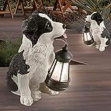 2x LED Solar Außen Leuchte Collie Hund Figuren Garten Steh Lampe braun weiß Terrassen Außen Beluchtung