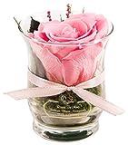 Rosen-Te-Amo – 1 Premium haltbare pinke Rose in der Vase mit echten Bindegrün; Konservierte Rose...