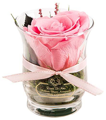 Rosen-Te-Amo – 1 Premium haltbare pinke Rose in der Vase mit echten Bindegrün; Konservierte Rose im Glass: 3 Jahre haltbar ohne Wasser perfekt als Geschenk oder Deko