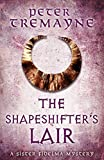The Shapeshifter's Lair (Sister Fidelma Mysteries Book 31) (Sister Fidelma 31) (English Edition)