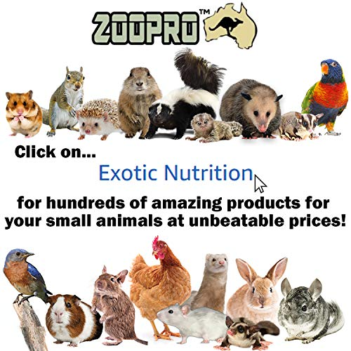 Exotic Nutrition Ramp Cover Mansion Cages, Wire Ladder Cover - Hedgehog, Chinchilla, Rat, Ferret, Degu, Prairie Dog, Rabbit, Guinea Pig