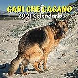 Cani Che Cagano Calendario 2021: Regali Divertenti