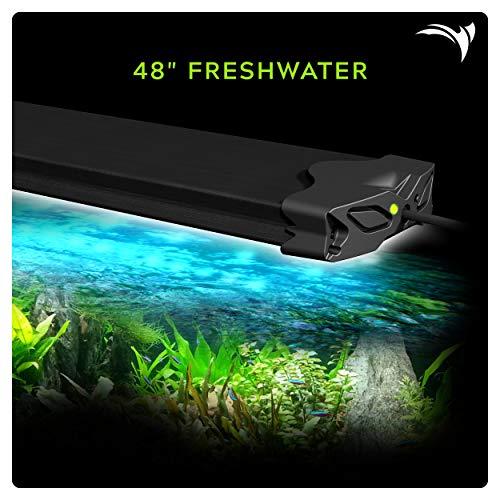 Aquatic Life Edge WiFi LED Aquarium Light, 48-Inch Freshwater