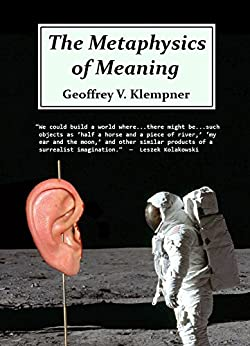 The Metaphysics of Meaning by [Geoffrey Klempner]