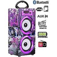 DYNASONIC - Altavoz Bluetooth Portatil 10W | Reproductor mp3 Inalámbrico Portátil, Lector USB SD, Radio FM - Modelo 020-4