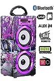 DYNASONIC Modelo 020-4 Altavoz Bluetooth Portatil 10W, Reproductor mp3 inalámbrico portátil, lector USB SD, Radio FM