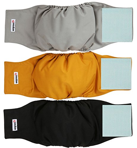 Dog Diapers Reusable Male