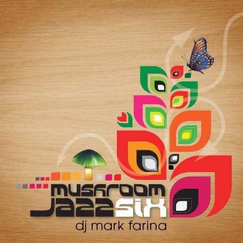 Mark Farina