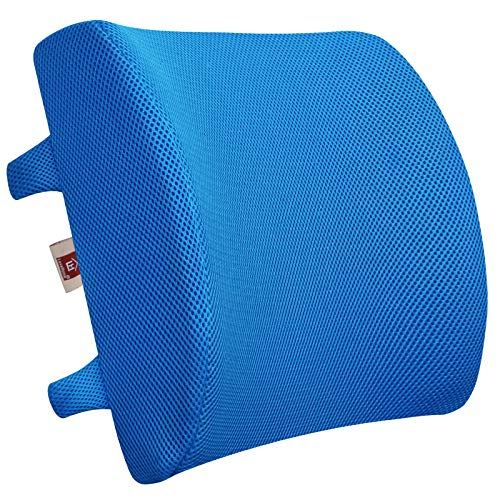 LOVEHOME Memory Foam Lumbar Support Back Cushion...