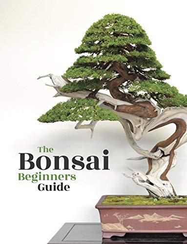 Bonsai: The Beginners Guide (English Edition)